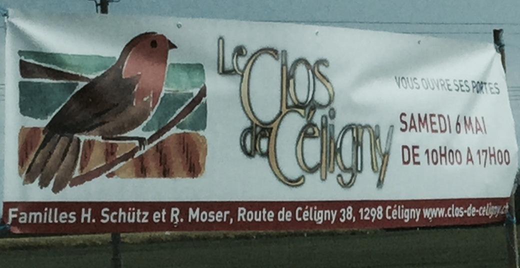 celigny wine