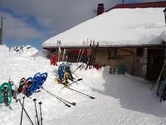 snowshoe 3